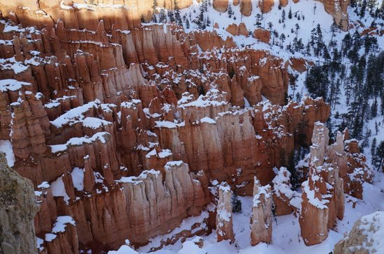Sunrise Point: Great upclose views of the hoodoos