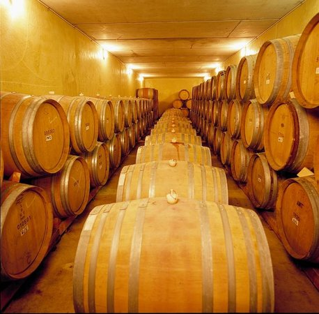 Isabel Vineyard: French Oak Barrels