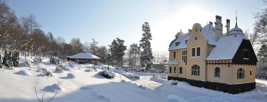Villa Elise Park Pension - zimą