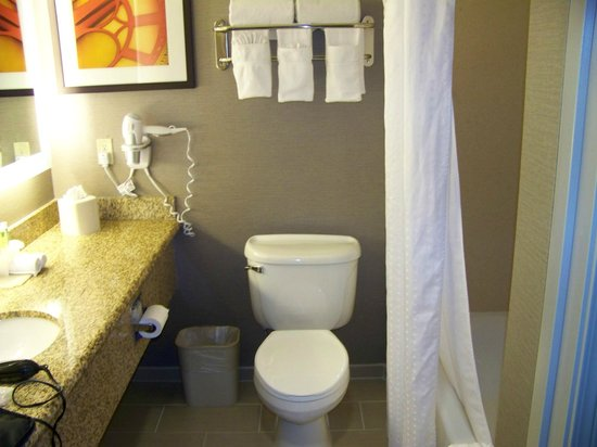 Holiday Inn Express Hotel & Suites - Santa Clara: bathroom