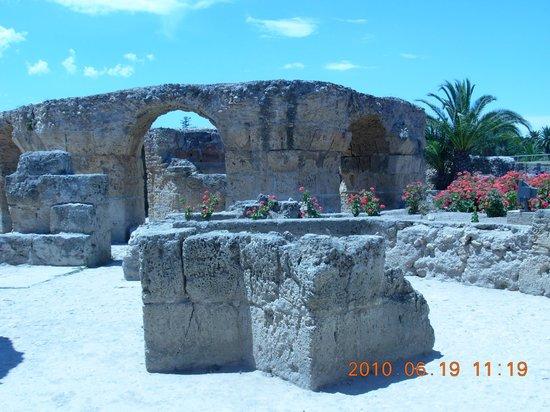 Ruines de Carthage : Ruiny Kartaginy, Tunezja