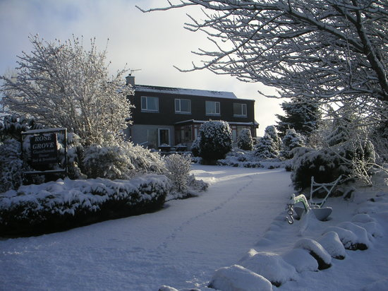 Rosegrove Guest House: Snowy garden and view of guest dining room