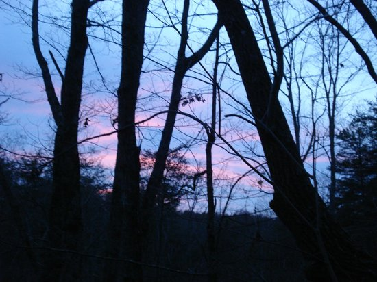 Cedar House Inn & Yurts : Our sunset from the Yurt's deck