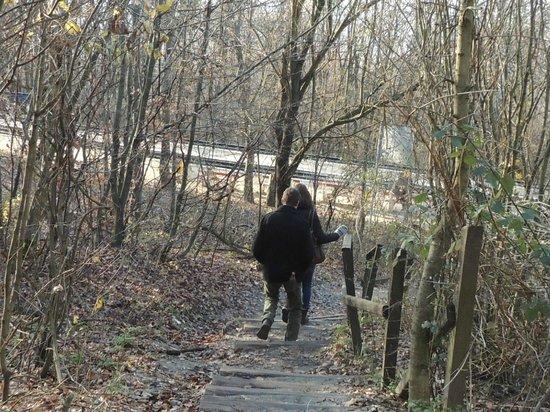 Janoshegy: heerlijk rustig wandelpunt ook!