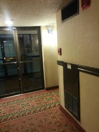 Filthy and smelly hallway picture of circus circus manor for Manor motor lodge las vegas