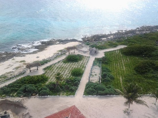 Coral Princess Golf & Dive Resort: eco park