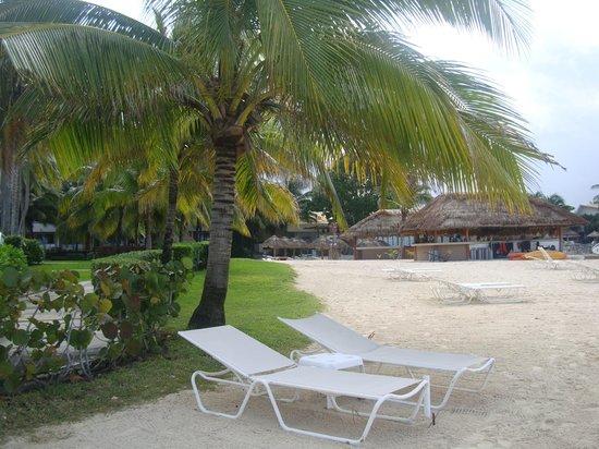Presidente Inter-Continental Cozumel Resort & Spa: Playa