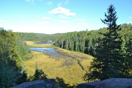 Beaver Pond Trail: View from the summit