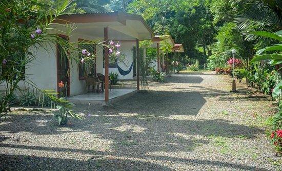 Costa Azul Lodge: Cabins