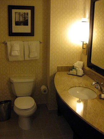Hilton Orlando Bonnet Creek : Guest room bath
