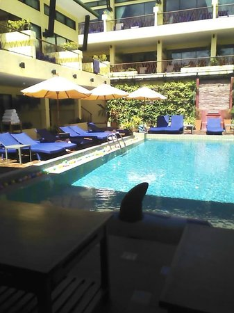 CC's Hideaway: This is the pool area.