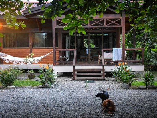 Kenaki Lodge: Bungalow