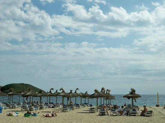 Sotavento Apartments: The Beach