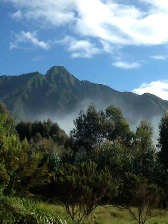 Sabyinyo Silverback Lodge: Gorgeous view of Sabyinyo Volcano