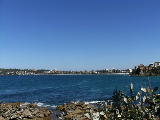McKillop Park: View Towards Manly
