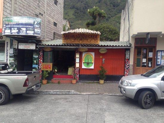 Sativa Studio Cafe: From across the street