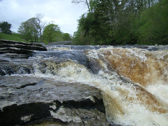 Settle, UK: Stainforth Force, Packhorse/Dog Hill Brow Bridge just visible: May 2012