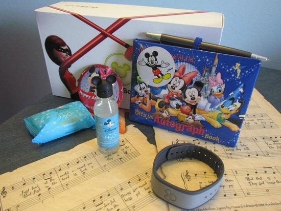 Disney's Art of Animation Resort: magic band