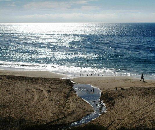 The Pearl Laguna: Beach Hike