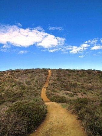 The Pearl Laguna: Hike