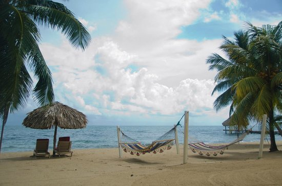 Jaguar Reef Lodge & Spa: Hammocks on the beach