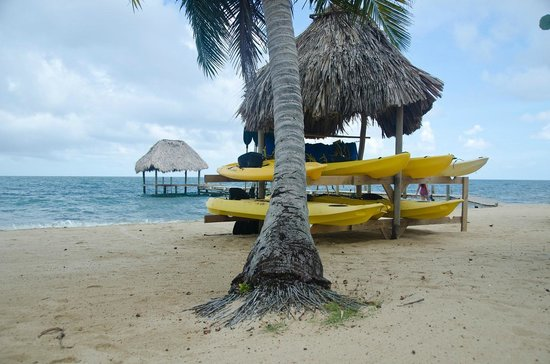 Jaguar Reef Lodge & Spa : Kayaks you can borrow