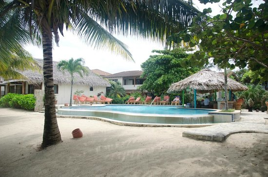 Jaguar Reef Lodge & Spa : The swim up bar