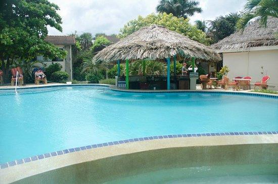 The Lodge at Jaguar Reef : The swim up bar