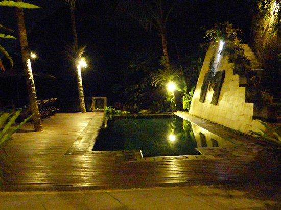 Villa Kalisha : pool at night