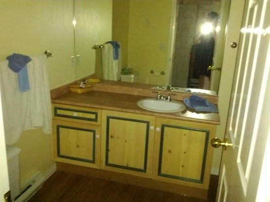 Borgata Lodge Hotel: Room 1 bathroom