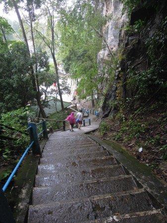 Krabi Kayak: neem de kortere tram links achteraan, minder inspannend en interessanter dan de lange hoge