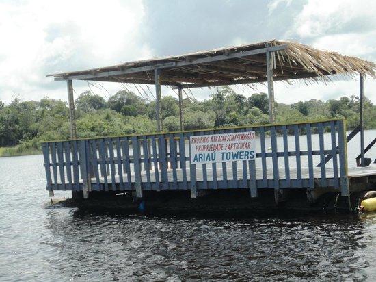 Ariau Amazon Towers Hotel: Flutuante - nado com os botos