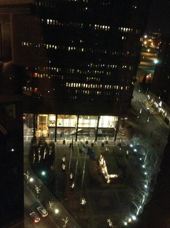 Omni William Penn Hotel: View from 1625