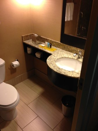 Crowne Plaza Lombard Downers Grove: Nice clean bathroom