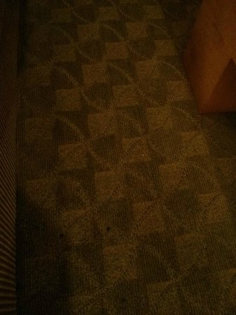 Platinum Hotel and Spa: filthy stained carpet in living room