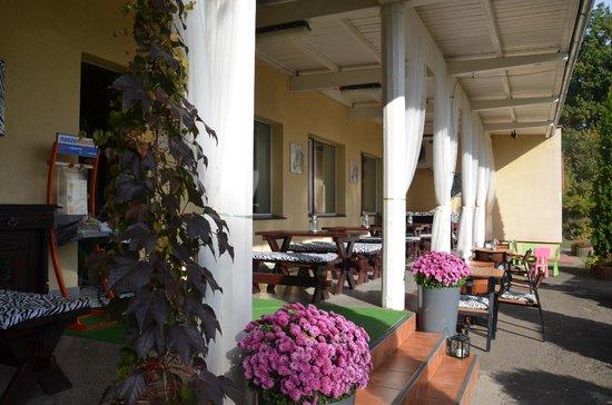 Olimpia Hotel: Taras