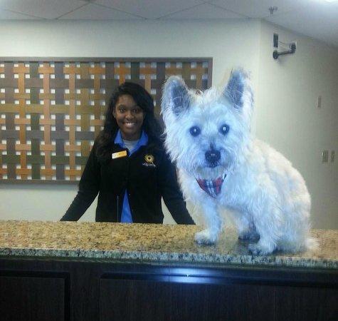 La Quinta Inn & Suites Milwaukee Bayshore Area: Friendly front desk