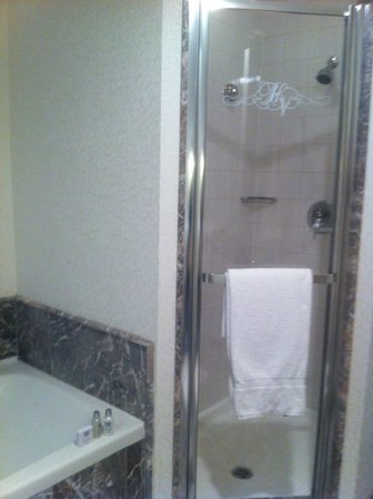 Loews Hôtel Vogue : bathroom
