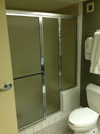 Crowne Plaza Auburn Hills : Shower