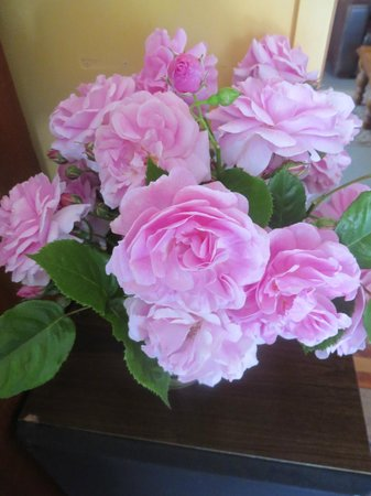 The Clearview Homestead: Welcoming flowers