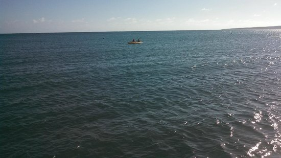 Copamarina Beach Resort & Spa : kayaking -- it looks farther offshore than it was