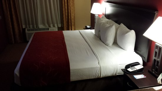 Comfort Suites Ontario Convention Center: Lovely bed