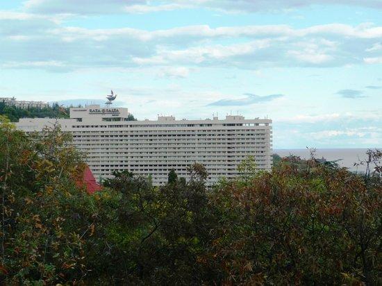 Yalta Intourist Hotel: Вид отеля из массандровского парка