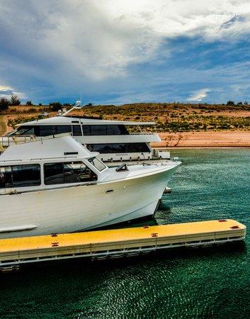 Lake Powell Resort : Boat Tour