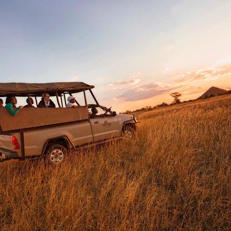 Sefapane Lodge and Safaris: Sunset Safari