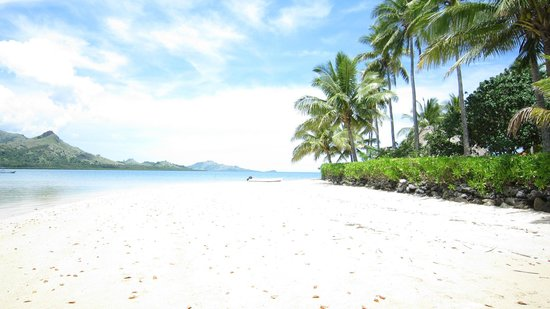 Nukubati Private Island: beach 2 steps from the resort
