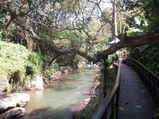 Maya Ubud Resort & Spa: way to the spa