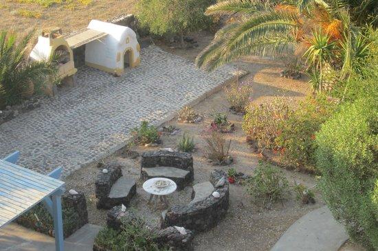 View of part of Ecoxenia garden