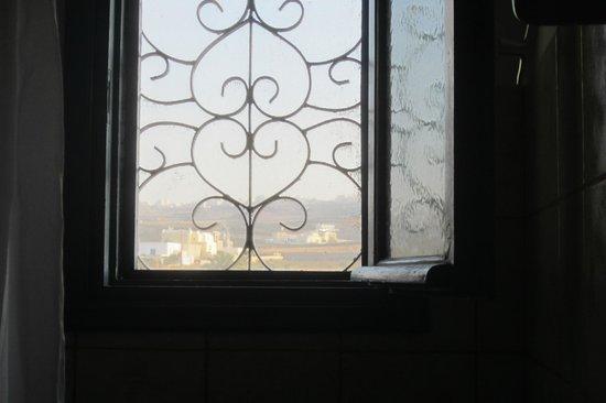 Ecoxenia: View from studio, beautiful door/with window
