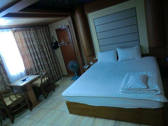 Elysee Motel : Room